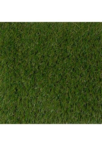 Andiamo Kunstrasen »Rhodos«, rechteckig, 42 mm Höhe, Meterware Breite 200 cm, uni,... kaufen