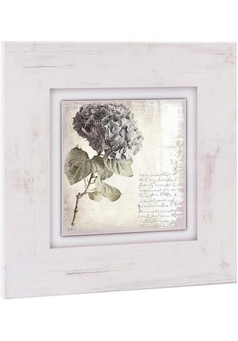 Home affaire Holzbild »Lila Blume«, 40/40 cm kaufen