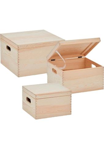 Zeller Present Aufbewahrungsbox, (Set, 3 St.), mit Deckel kaufen