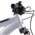 FUJI Bikes Mountainbike »Fuji Nevada 29 1.3«, 11 Gang, Shimano, Deore Schaltwerk, Kettenschaltung