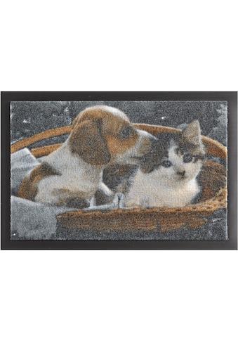 HANSE Home Fußmatte »Animals 2«, rechteckig, 7 mm Höhe, Schmutzfangmatte,... kaufen