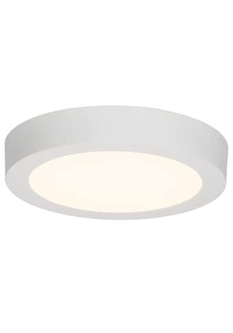 Brilliant Leuchten Katalina LED Aufbauleuchte 23cm weiß kaufen