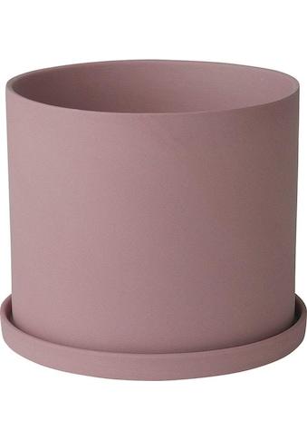 BLOMUS Kräutertopf »NONA« kaufen