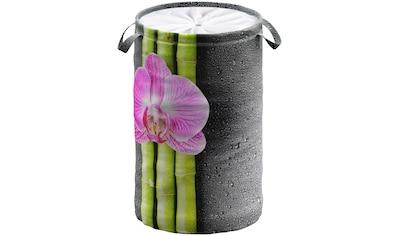Sanilo Wäschekorb »Asia«, 60 Liter, faltbar, mit Sichtschutz kaufen