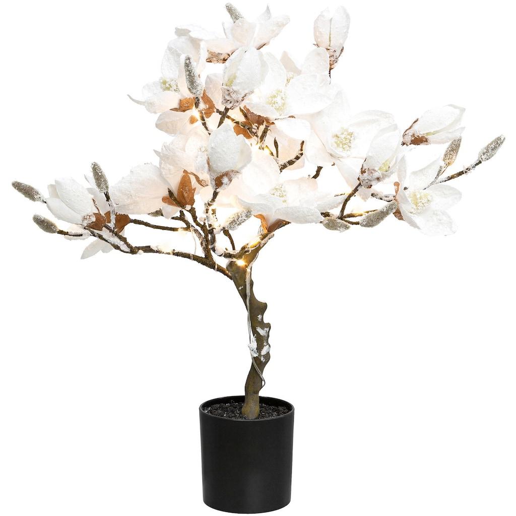 Creativ deco LED Baum »Magnolie«, Warmweiß, beschneit, Höhe ca. 58 cm, mit 20 LEDs