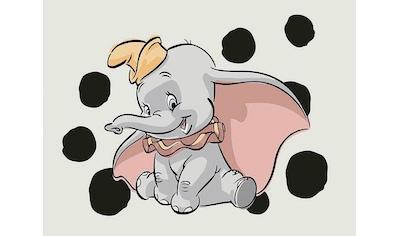KOMAR XXL Poster »Dumbo Dots Landscape« kaufen