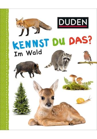Buch »Kennst du das? Im Wald / DIVERSE« kaufen