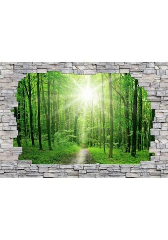 Wall-Art Fototapete »Sunny Forest Mauer« kaufen