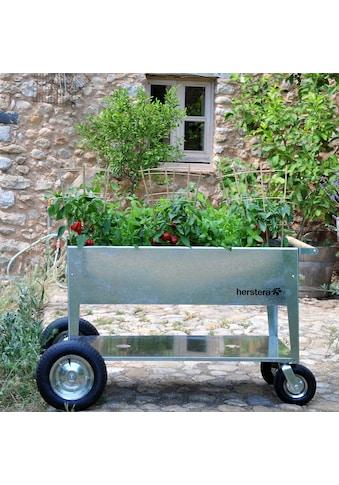 Herstera Garden Hochbeet »Swivel«, BxTxH: 120x60x80 cm kaufen