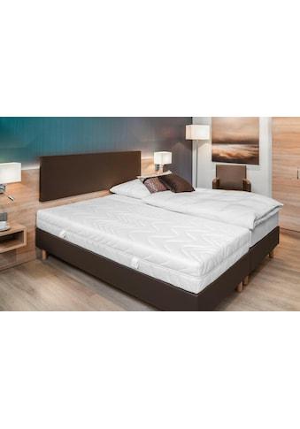 BeCo EXCLUSIV Komfortschaummatratze »Superia«, 21 cm cm hoch, Raumgewicht: 35 kg/m³,... kaufen