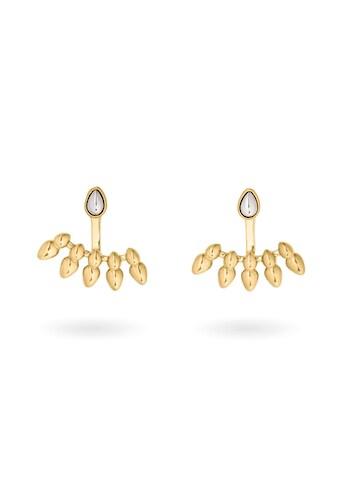 Pippa & Jean Paar Ohrhänger »Set: PJ453«, (2 tlg.), gelbvergoldet kaufen