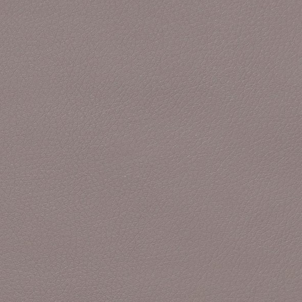 TOM TAILOR Boxspringbett »COLOR BOX«, ohne Print