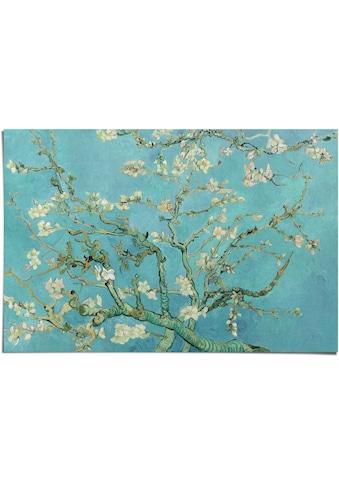 Reinders! Poster »Poster Mandelblüte Vincent van Gogh - Alte Meister - Berühmte... kaufen