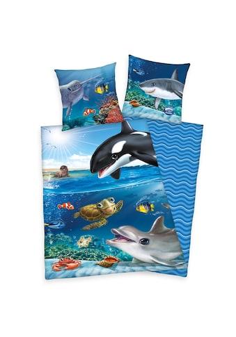 Herding Kinderbettwäsche »Animal Club Ocean, Baumwoll-Renforcé« kaufen