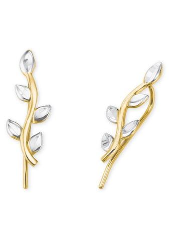 Amor Paar Ohrhänger »2020251« kaufen