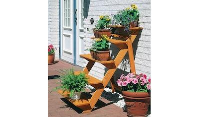 promadino Pflanzentreppe »Blumentreppe groß«, BxTxH: 78x100x109 cm kaufen
