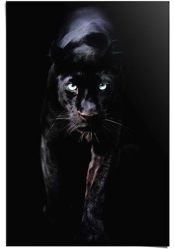 Reinders! Poster »Poster Schwarzer Panther«, Tiere, (1 St.) kaufen