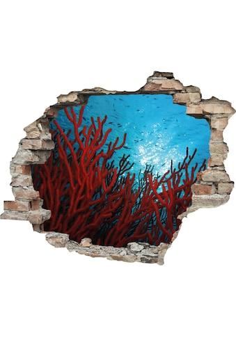 queence Wandtattoo »Korallen« kaufen