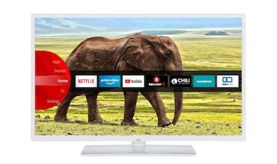 "JVC LED-Fernseher »LT-32VF5955W«, 80 cm/32 "", Full HD, Smart-TV kaufen"