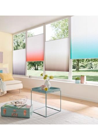 my home Plissee »Ombré«, Farbverlauf kaufen