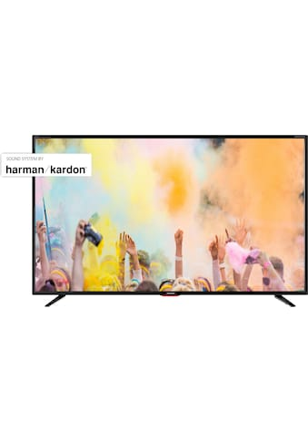 "Sharp LED-Fernseher »4T-55BJx«, 139 cm/55 "", 4K Ultra HD, Smart-TV kaufen"