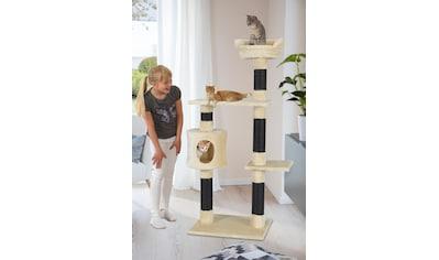 ABUKI Kratzbaum »Sam«, hoch, BxTxH: 61x50x147 cm kaufen
