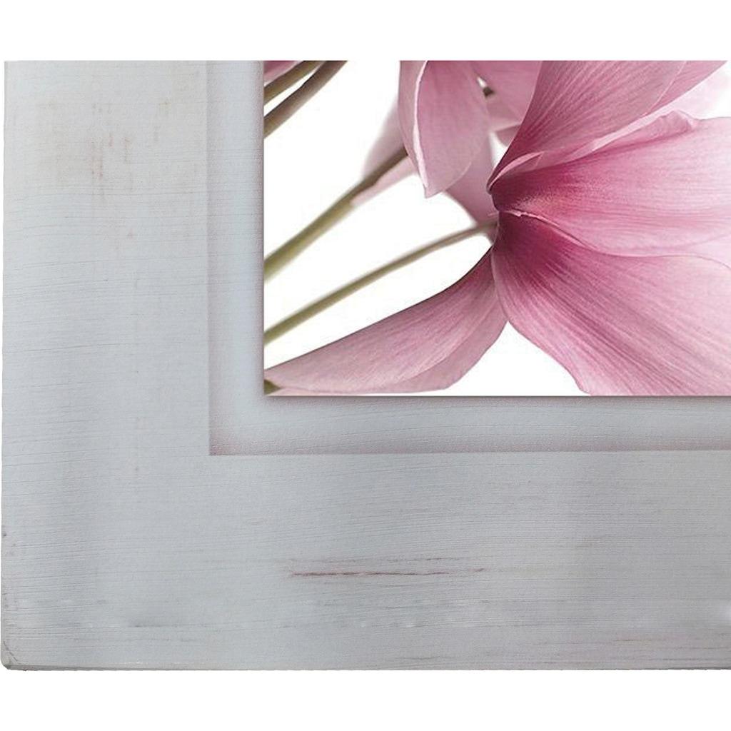 Home affaire Holzbild »Rosa Veilchen«, 40/40 cm