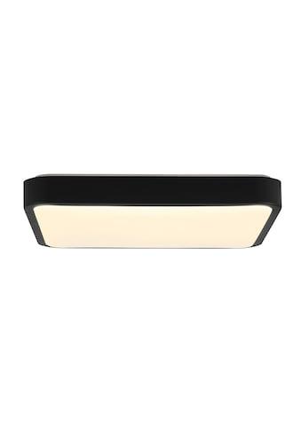 Brilliant Leuchten Slimline LED Wand- und Deckenleuchte 38x38cm schwarz kaufen