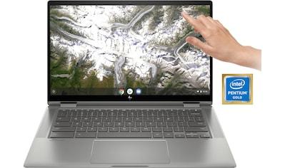 "HP Chromebook »x360 14c-ca0215ng«, (35,56 cm/14 "" Intel Pentium Gold HD Graphics\r\n),... kaufen"