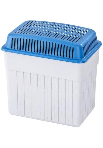 WENKO Luftentfeuchter »Feuchtigkeitskiller«, ausreichend für 4,7 l Flüssigkeit kaufen
