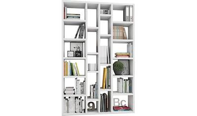 fif möbel Raumteilerregal »TOR391-6«, Breite 145 cm kaufen