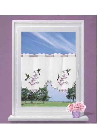 Dreams Scheibengardine »Vogel« kaufen