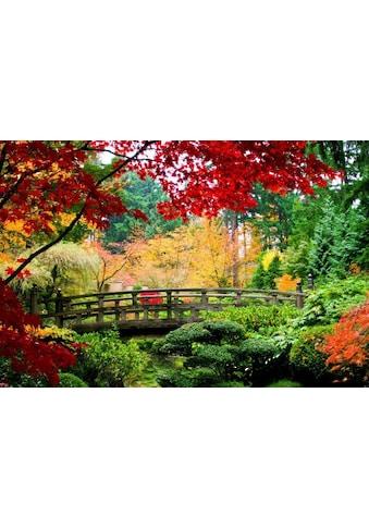 Home affaire Fototapete »Bridge in Japanese Garden« kaufen