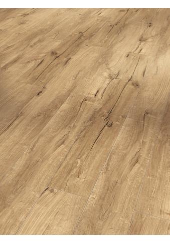 PARADOR Laminat »Trendtime 1  -  Eiche Century«, 1285 x 158 mm, Stärke: 8 mm kaufen