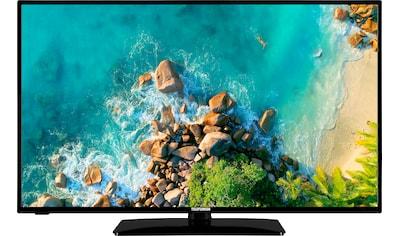 "Telefunken LED-Fernseher »D43F553M1«, 108 cm/43 "", Full HD kaufen"