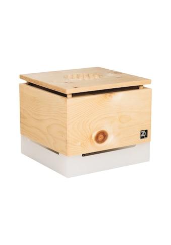 ZirbenLüfter® Luftreiniger »CUBE Salzburg pure 40m2« kaufen