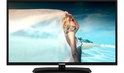 "Telefunken LCD-LED Fernseher »D32H554M1CWV«, 80 cm/32 "", HD-ready, Smart-TV kaufen"
