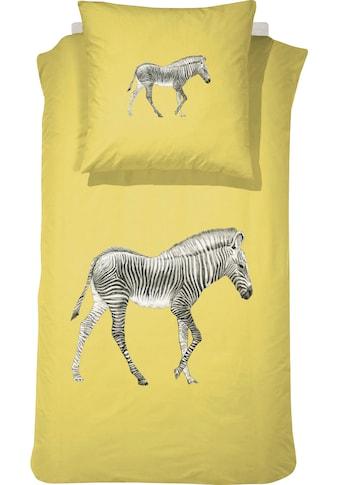 damai Kinderbettwäsche »Sonny«, mit Zebra kaufen