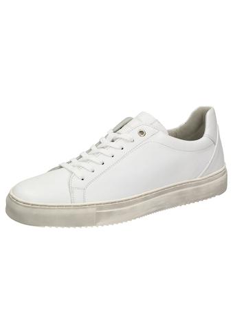 SIOUX Sneaker »Tils sneaker 001« kaufen