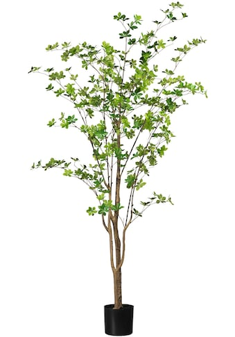Creativ green Kunstbaum »Louisiana - Baum« (1 Stück) kaufen