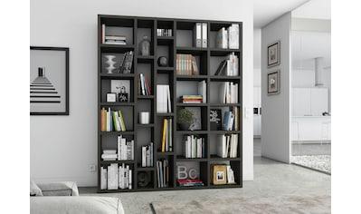 fif möbel Raumteilerregal »TOR390-6«, Breite 190 cm kaufen