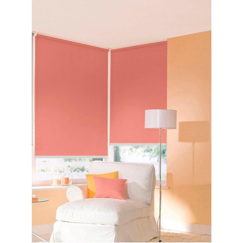 sunlines Seitenzugrollo nach Maß »Start-up Style uni«, Lichtschutz, ohne Bohren, freihängend, Made in Germany