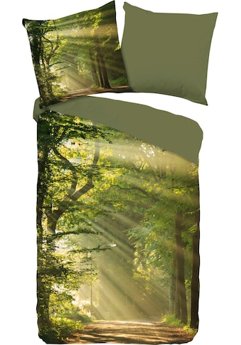 good morning Wendebettwäsche »Woods«, mit Waldmotiv kaufen