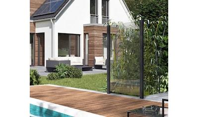 Zaun, Glaszaun, Gesamtlänge: 1,217 m, 2 Pfosten kaufen