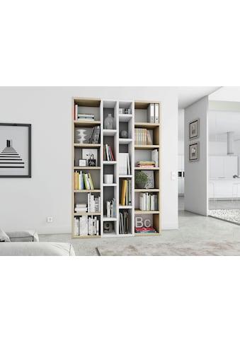 fif möbel Raumteilerregal »TOR391-4«, Breite 145 cm kaufen