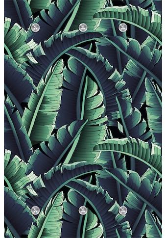 queence Garderobe »Dschungel« kaufen