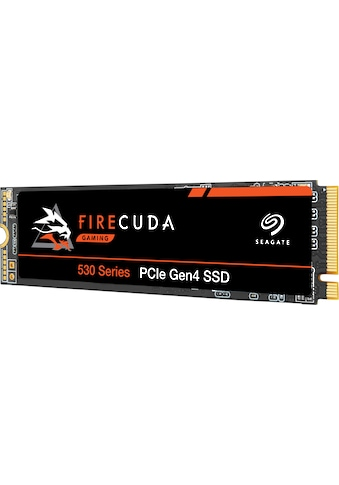 Seagate Gaming-SSD »FireCuda 530«, Inklusive 3 Jahre Rescue Data Recovery Services kaufen