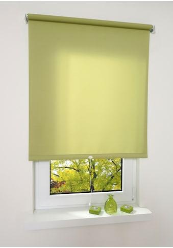 Springrollo »Uni«, Liedeco, Lichtschutz, freihängend kaufen