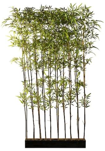 Creativ green Künstliche Zimmerpflanze »Bambusraumteiler«, im Holzkasten kaufen