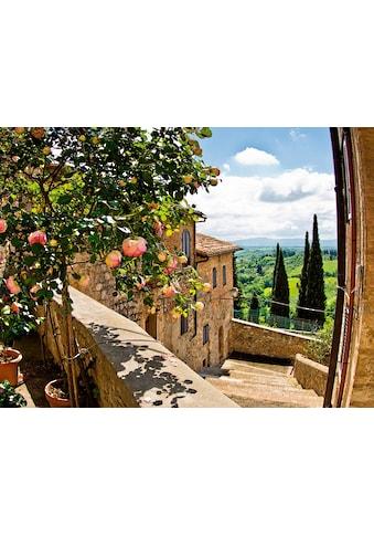 Home affaire Glasbild »banepetkovic: Rosen in San Gimignano, mit Toskanalandschaft«,... kaufen